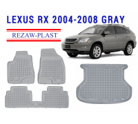 All Weather Floor Mats Trunk Liner Set For LEXUS RX 2004-2008 Gray